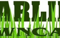 logo-design-services_clc