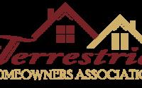 logo-design-services_tha