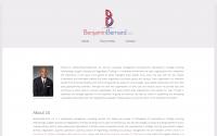 BenjaminBernard, LLC Website Design
